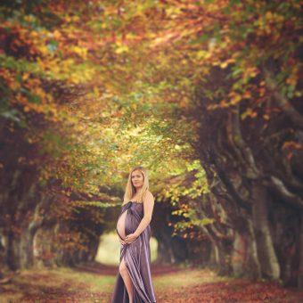 Fairytale gravid